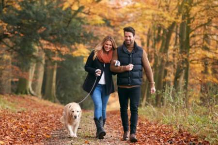 Ključni pojmovi dobre veze: Šta je nužno da bi partneri bili zadovoljni zajednicom