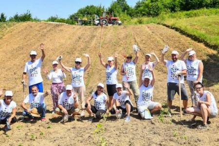 Volonteri kompanije NIS posadili povrće i začinsko bilje u bašti namenjenoj Superherojima iz NURDOR Roditeljskih kuća