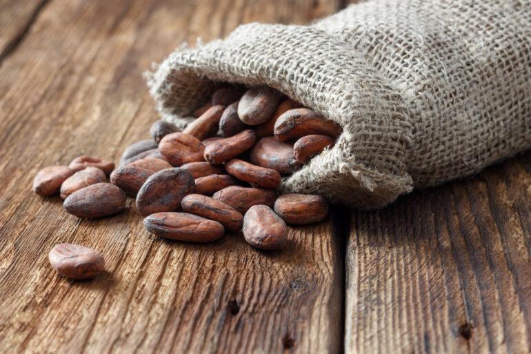 kakaovac zrna